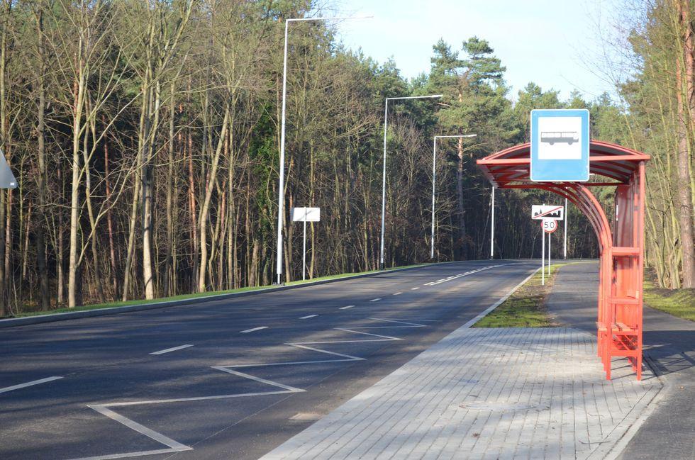 Drogi i ulice , Protest przeciwko wycince drzew Myśliborskiej - zdjęcie, fotografia